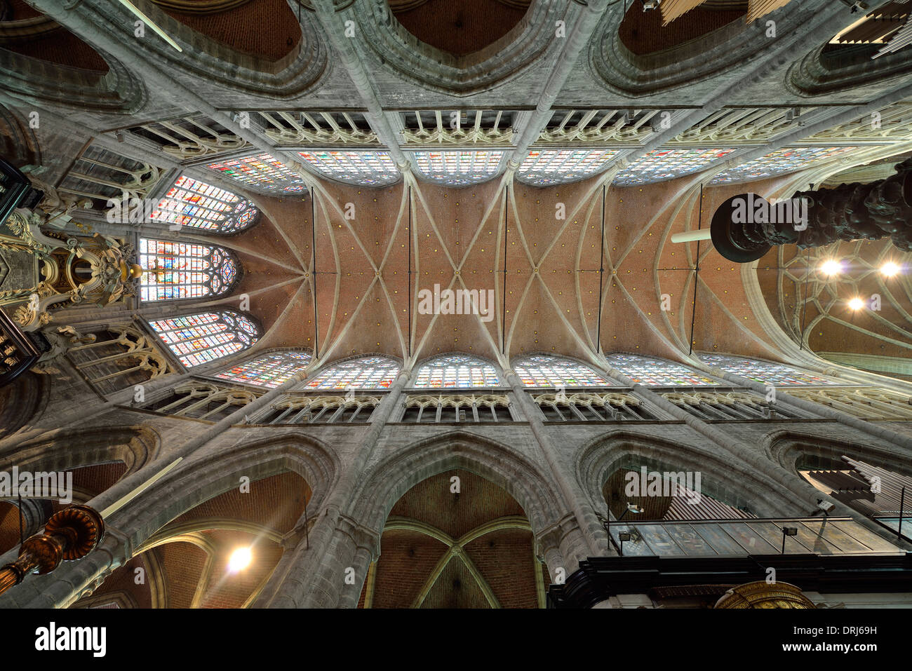 Indoor photograph cover net vault in the choral space, Roman-Catholic St. Bavo cathedral (in Dutch Sint-Baafskathedraal) Ghent, - Stock Image