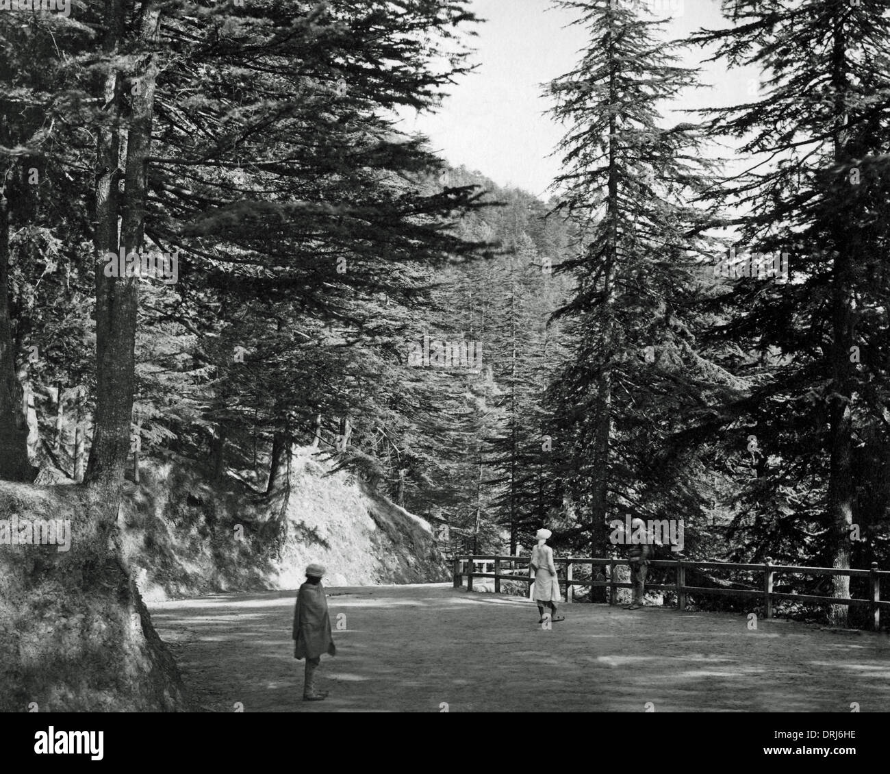 Mall Road, Simla (Shimla), India - Stock Image