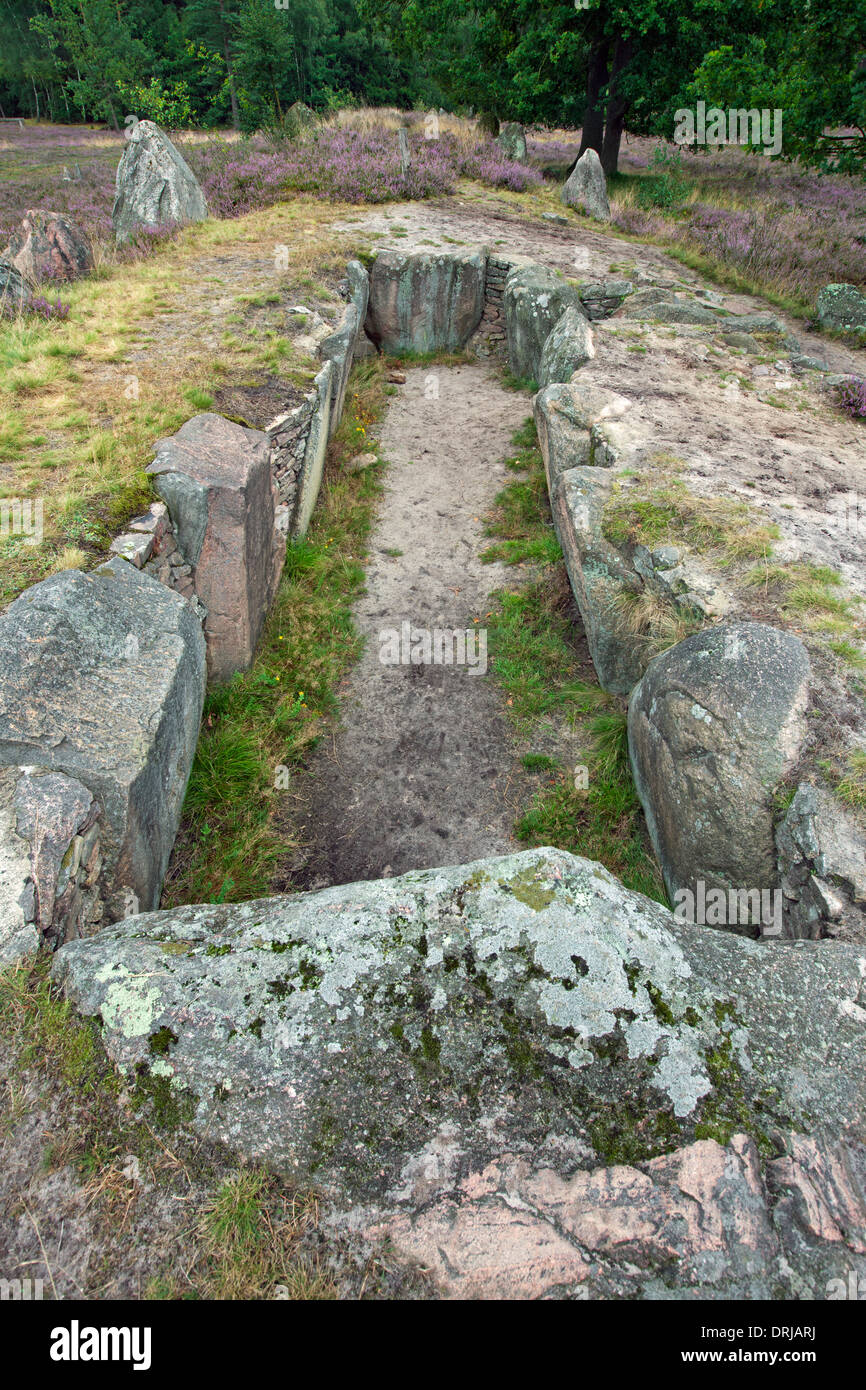 Passage grave at Oldendorfer Totenstatt, megalithic site in Oldendorf near Amelinghausen, Lueneburg Heath, Lower Stock Photo