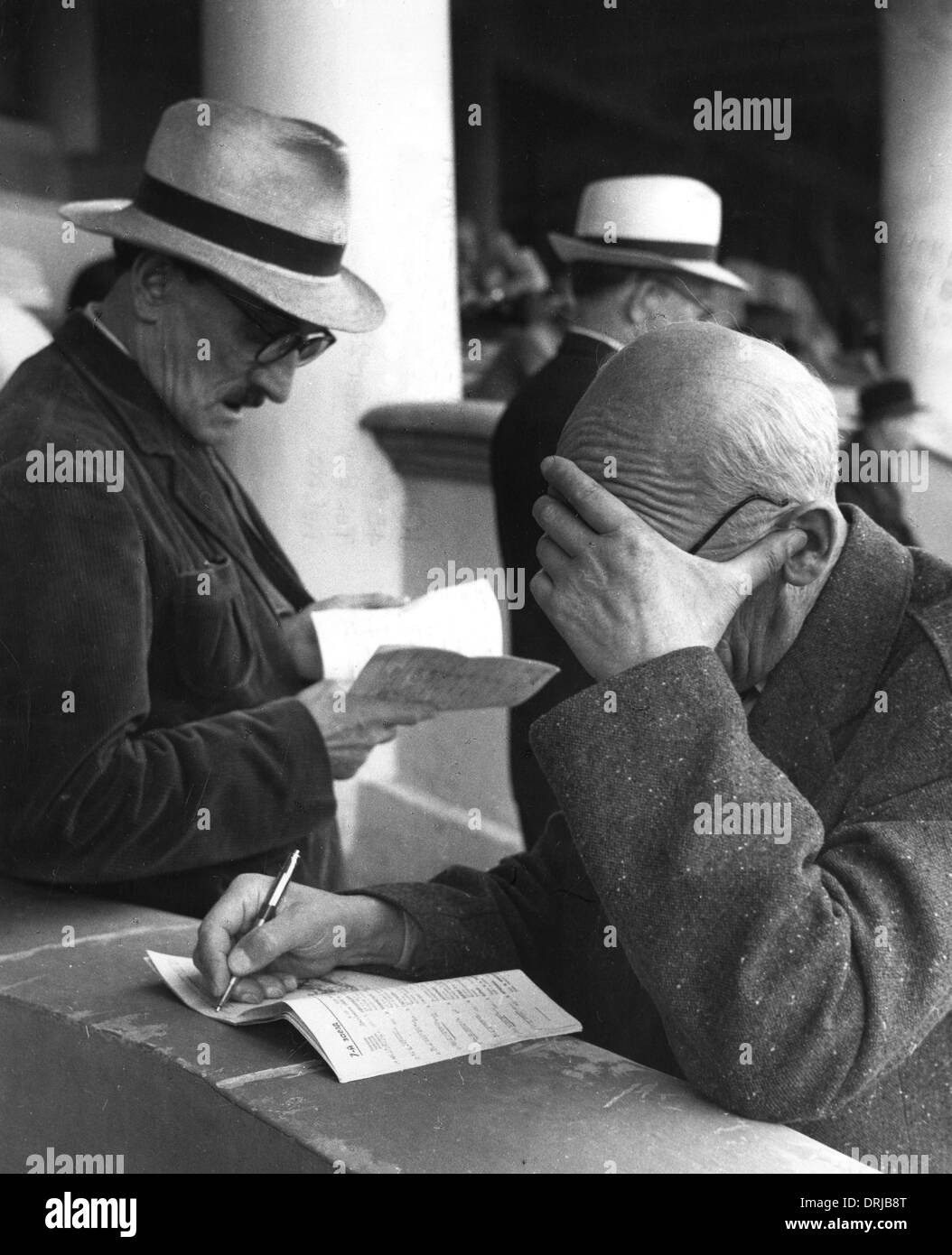 Men studying horseracing programme, Moscow racecourse - Stock Image