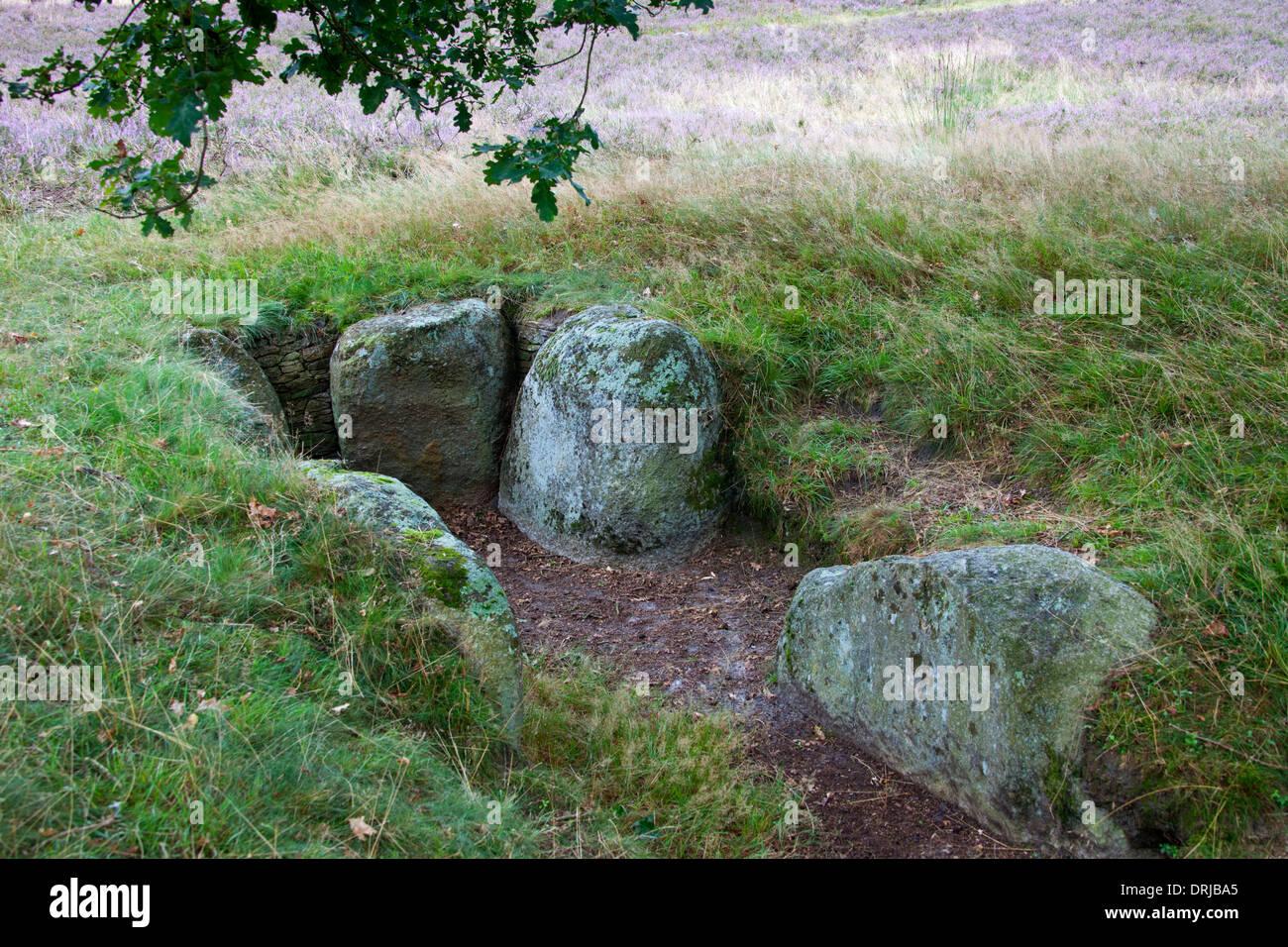 Passage grave at Oldendorfer Totenstatt, megalithic site in Oldendorf near Amelinghausen, Lueneburg Heath, Lower Stock Photo