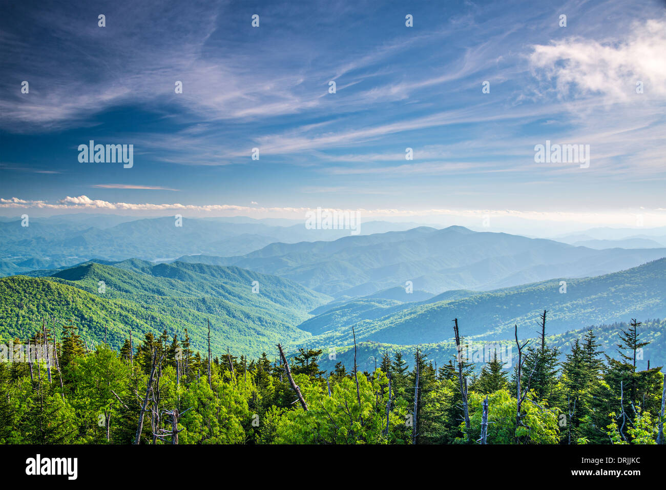 View from Clingman's Dome in the Great Smoky Mountains National Park near Gatlinburg, Tennessee. - Stock Image