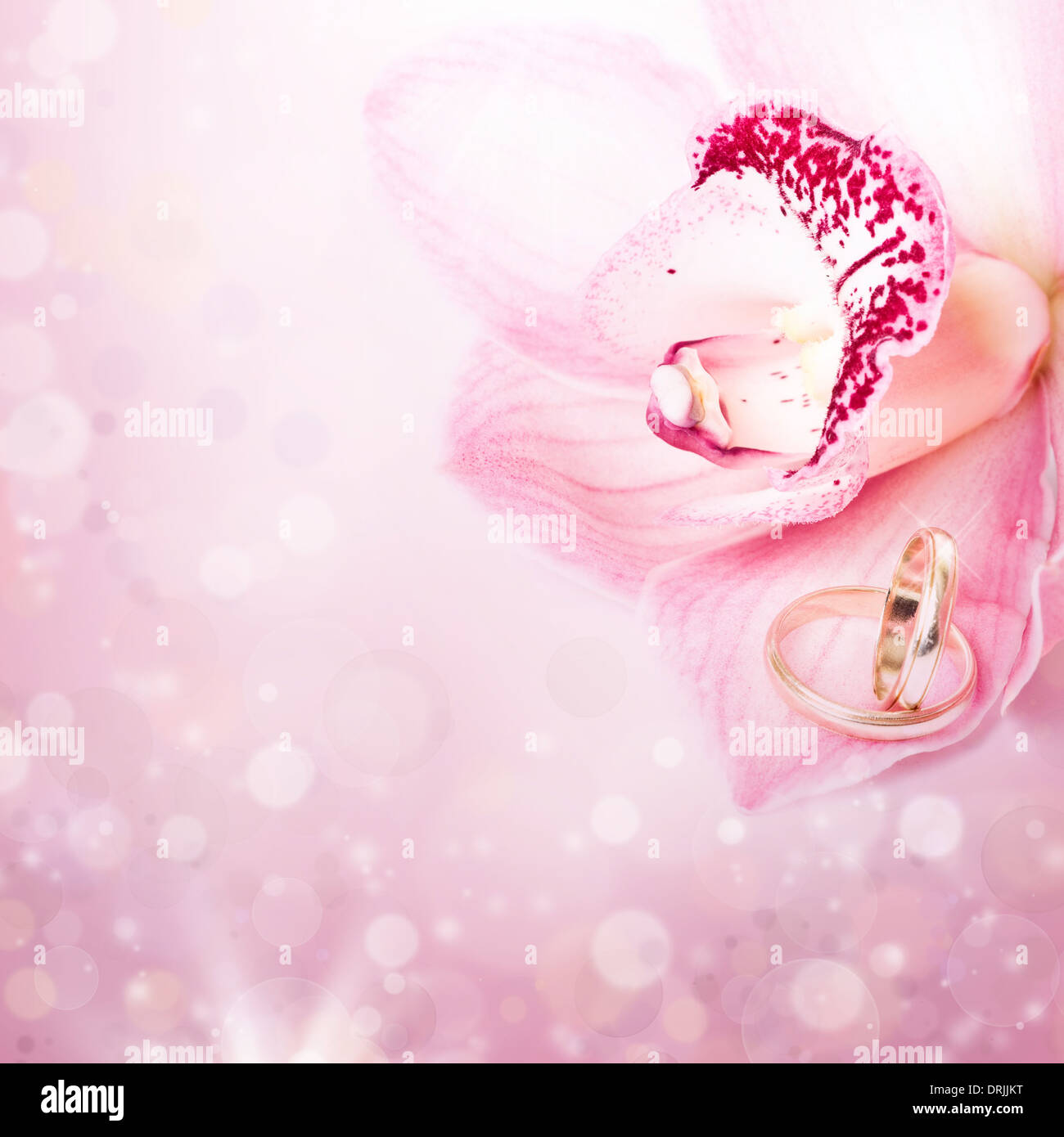 Orchid and wedding ring on pink background Stock Photo: 66177996 - Alamy