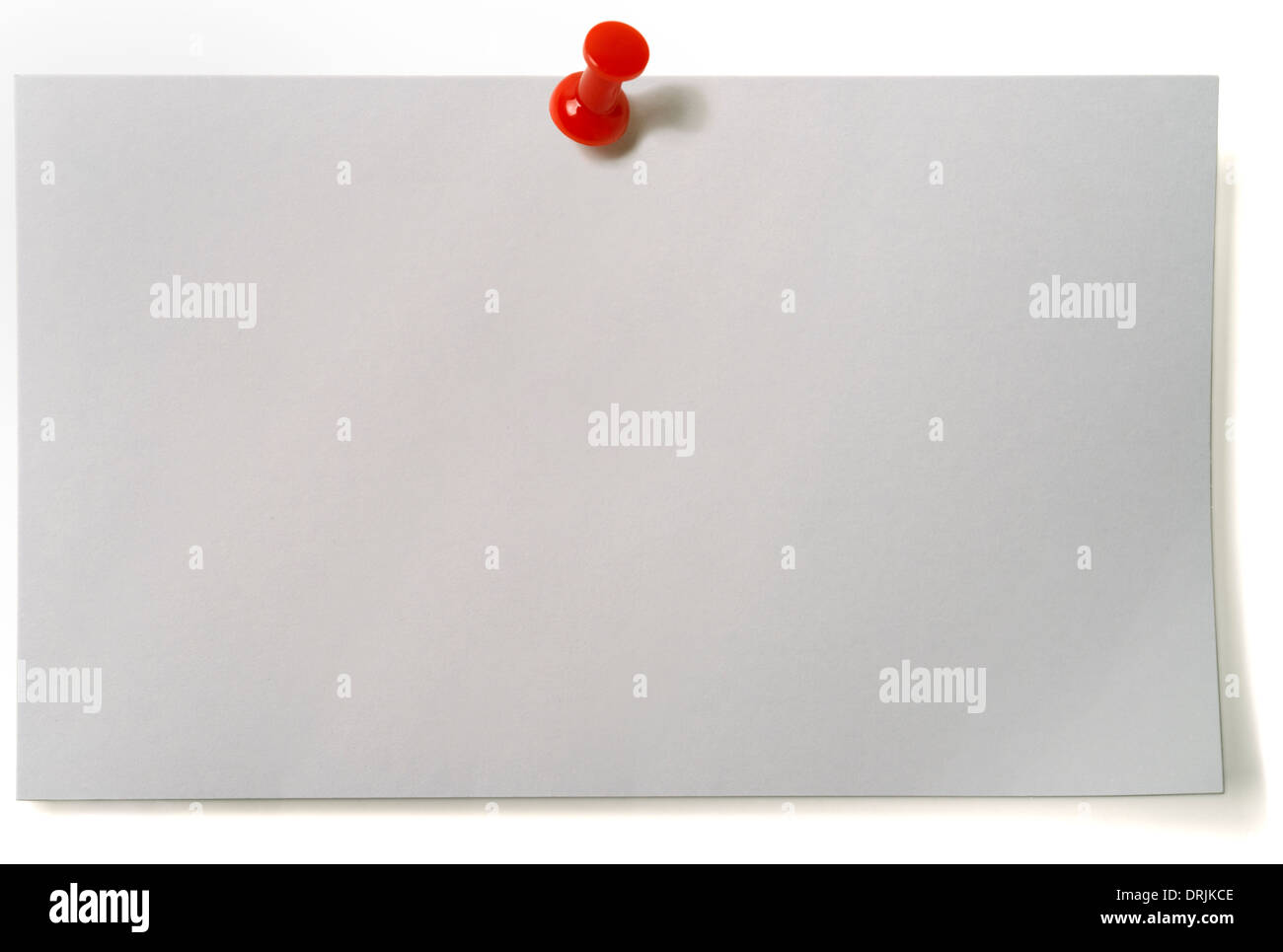 Index Card - Stock Image