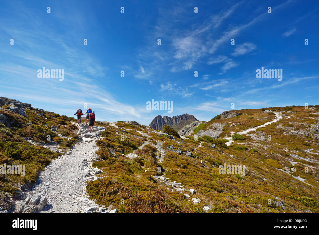 Hikers reaching the summit of a ridge with Cradle Mountain in background (Tasmania) - Stock Image