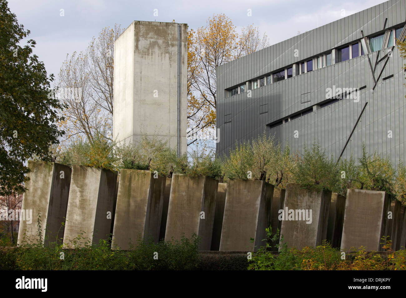Oleaster in the Garden of Exile with the Jewish Museum's building in the background, Berlin, Germany - Stock Image