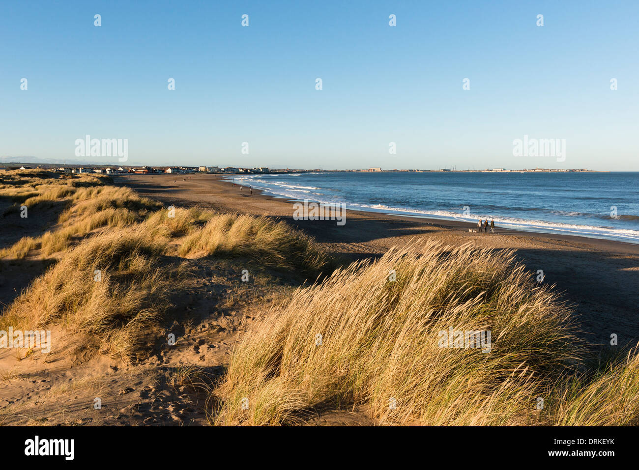 Seaton carew dunes