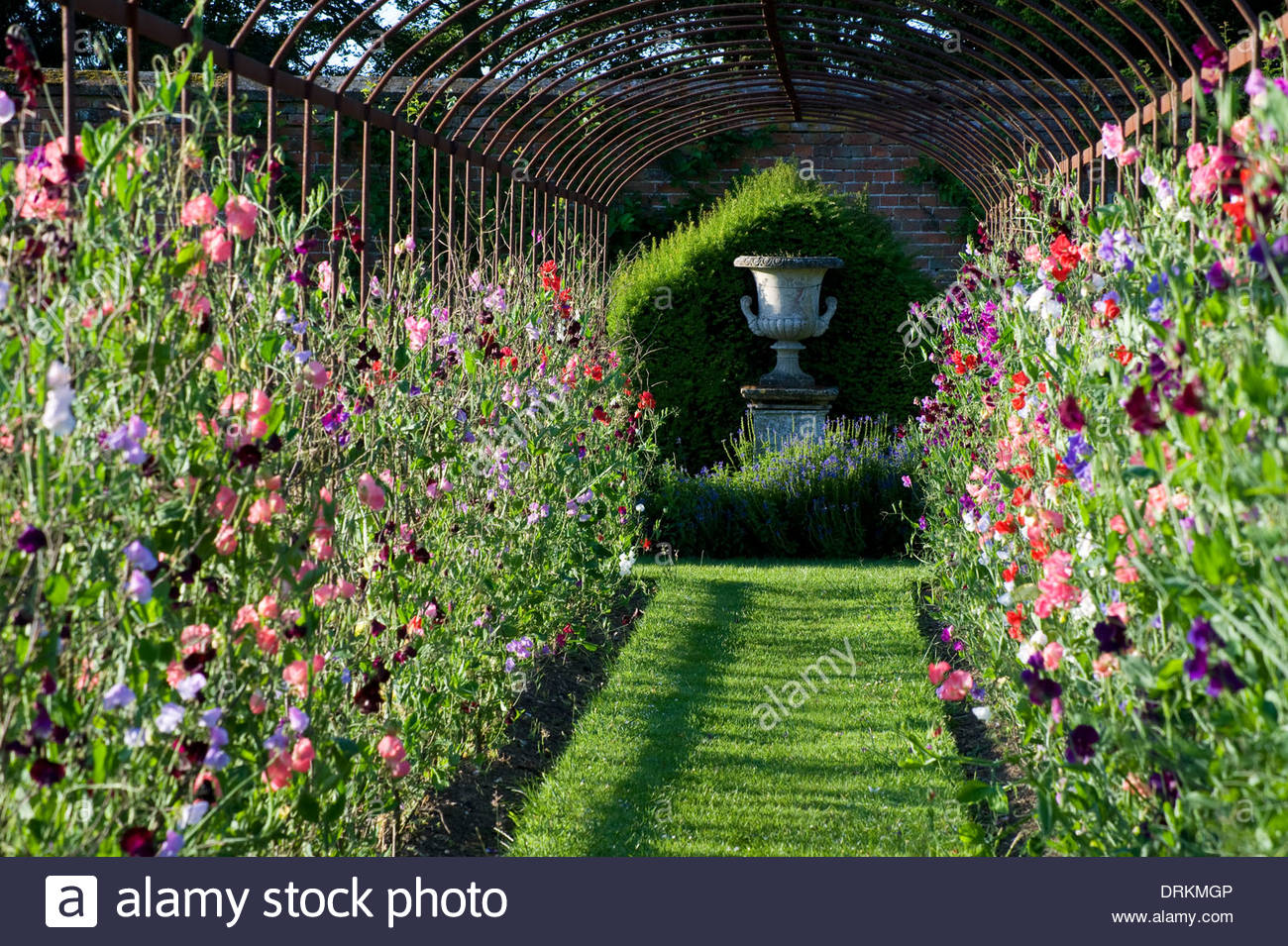 Helmingham Hall Suffolk Design Xa Tollemache English Garden Formal Classic Style Colour Color Metal Hoop Tunnel Plant Support