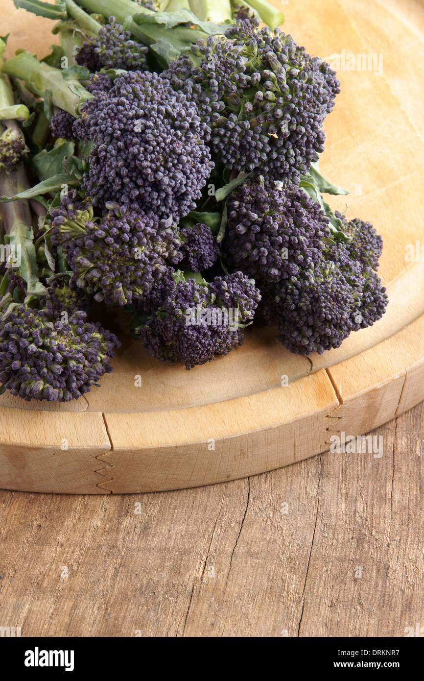 Purple sprouting broccoli a winter vegetable high in nutrients - Stock Image