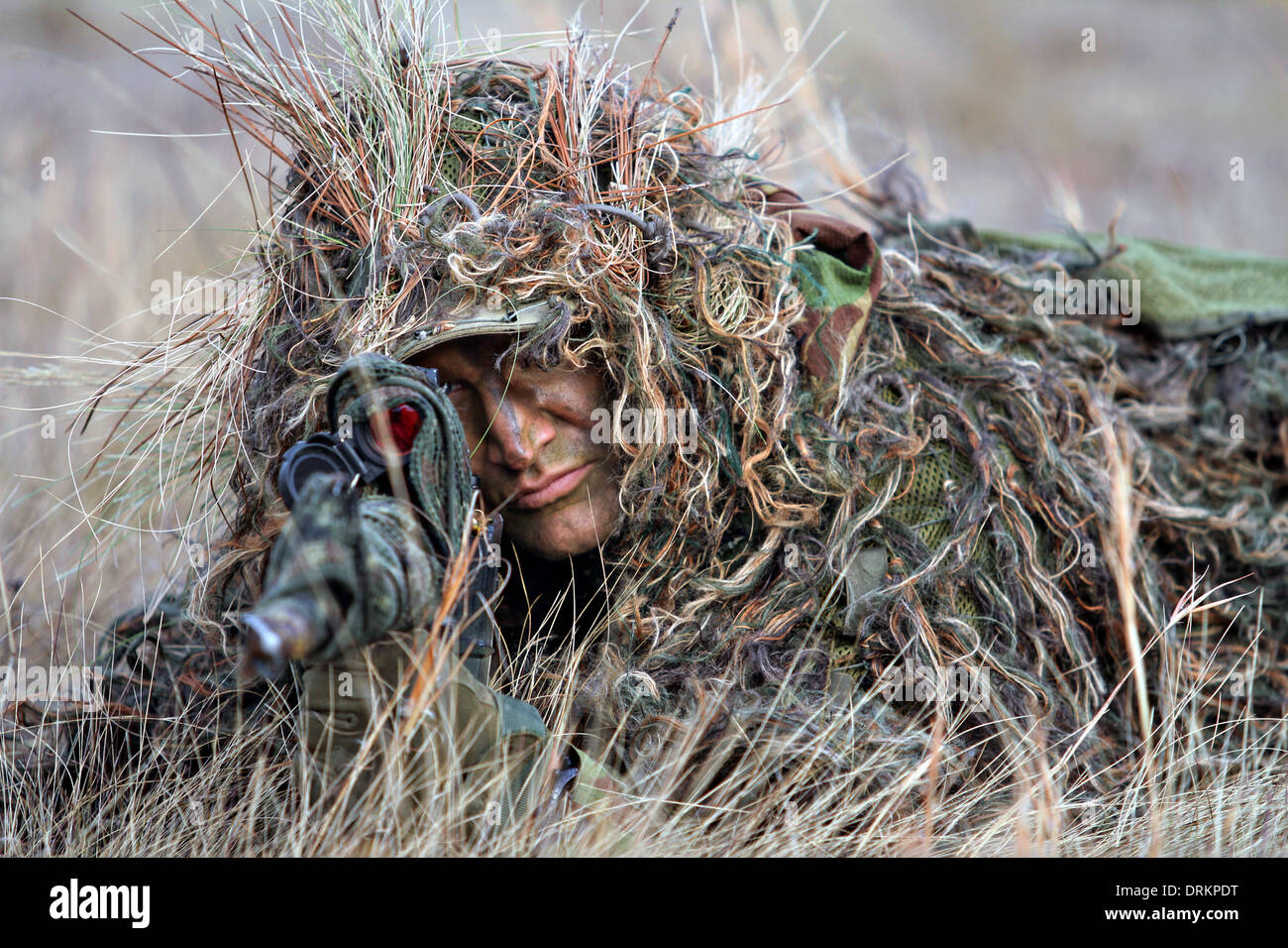 A sniper with the Royal Netherlands Army during joint training exercises January 13, 2014 in Fort Bragg, North Carolina. - Stock Image