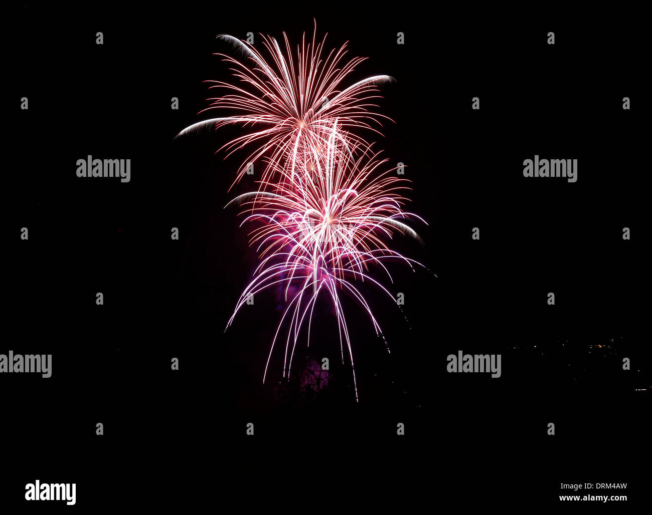 Pink and white fireworks at black sky - Stock Image
