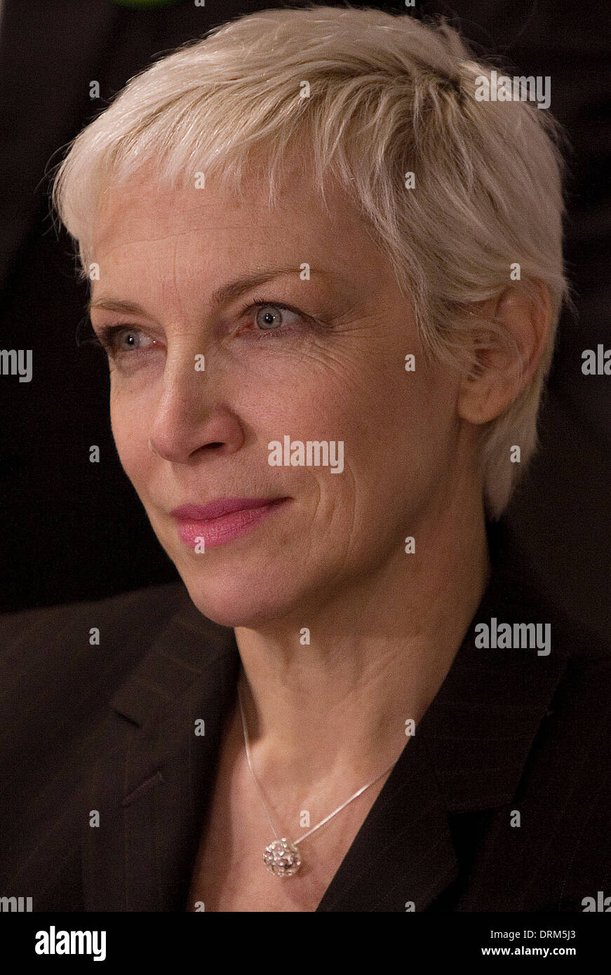 A tearful singer Annie Lennox at a unilateral Gaza press conference held at London Holiday Inn - Stock Image