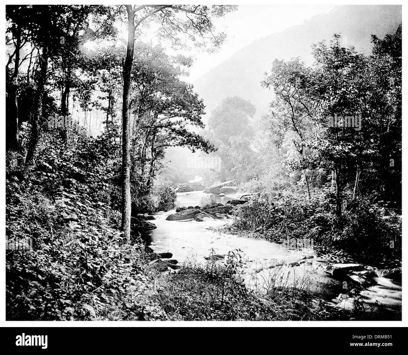 Brendon Water, Rockford hamlet  of the New Forest National Park of Hampshire, England Photographed Circa 1910 - Stock Image