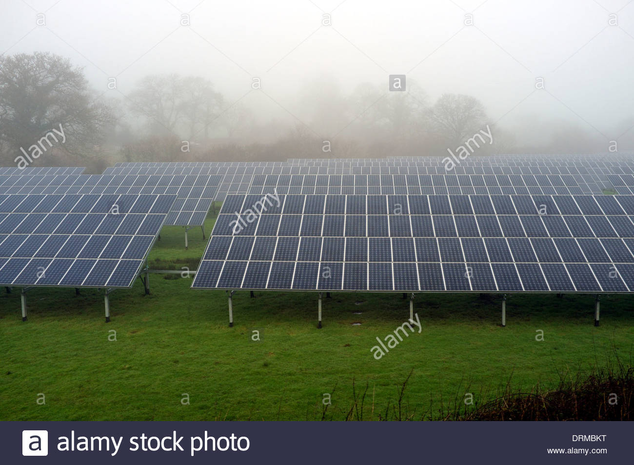 Solar panel farm on a dull misty day, in Somerset, UK. - Stock Image