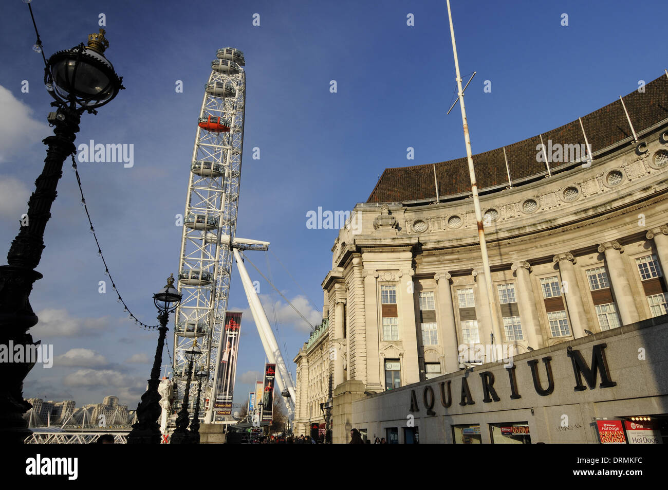 The London Eye and London Aquarium on the Southbank London England - Stock Image