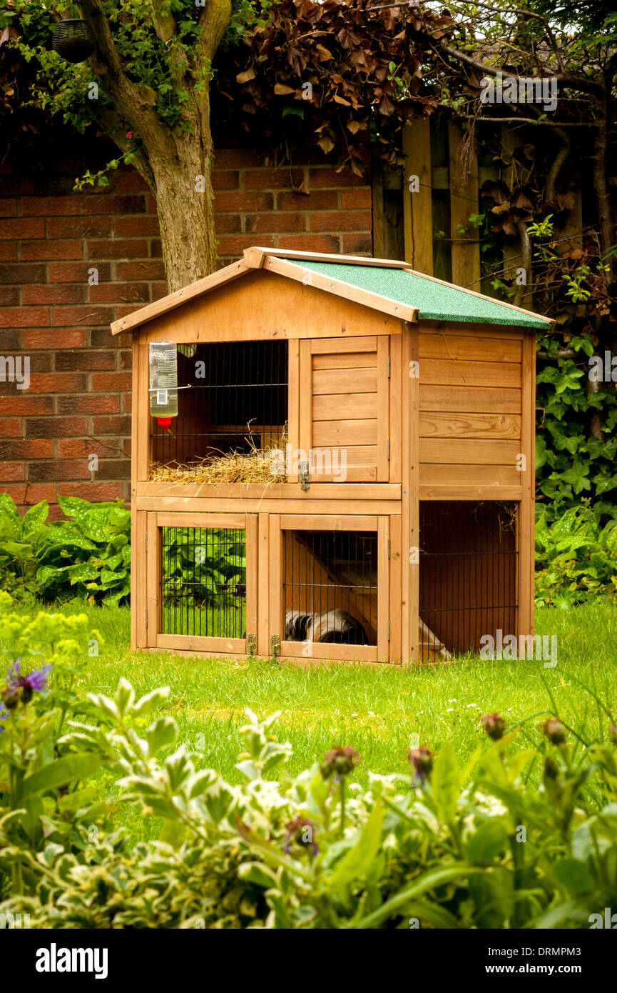 Guinea pig hutch on domestic lawn - Stock Image