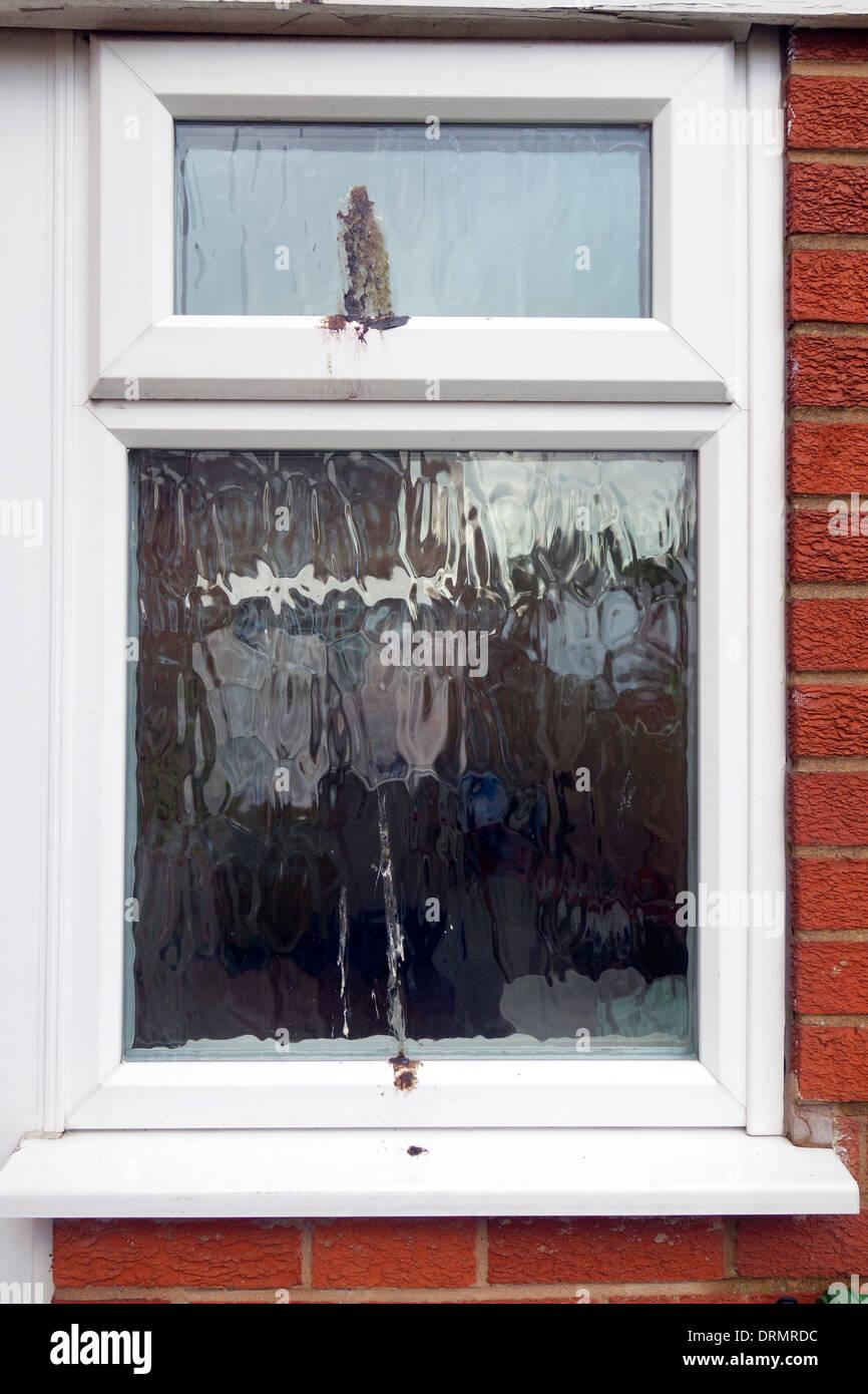 Bird Droppings on a uPVC Double Glazed Window, UK - Stock Image
