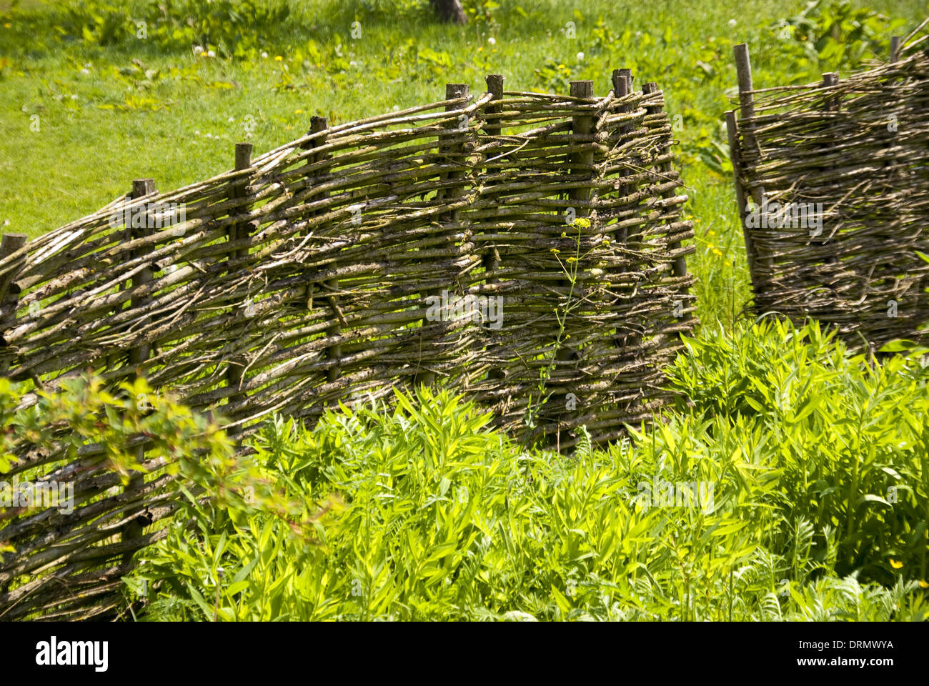 Flechtzaun Stock Photo 66227598 Alamy