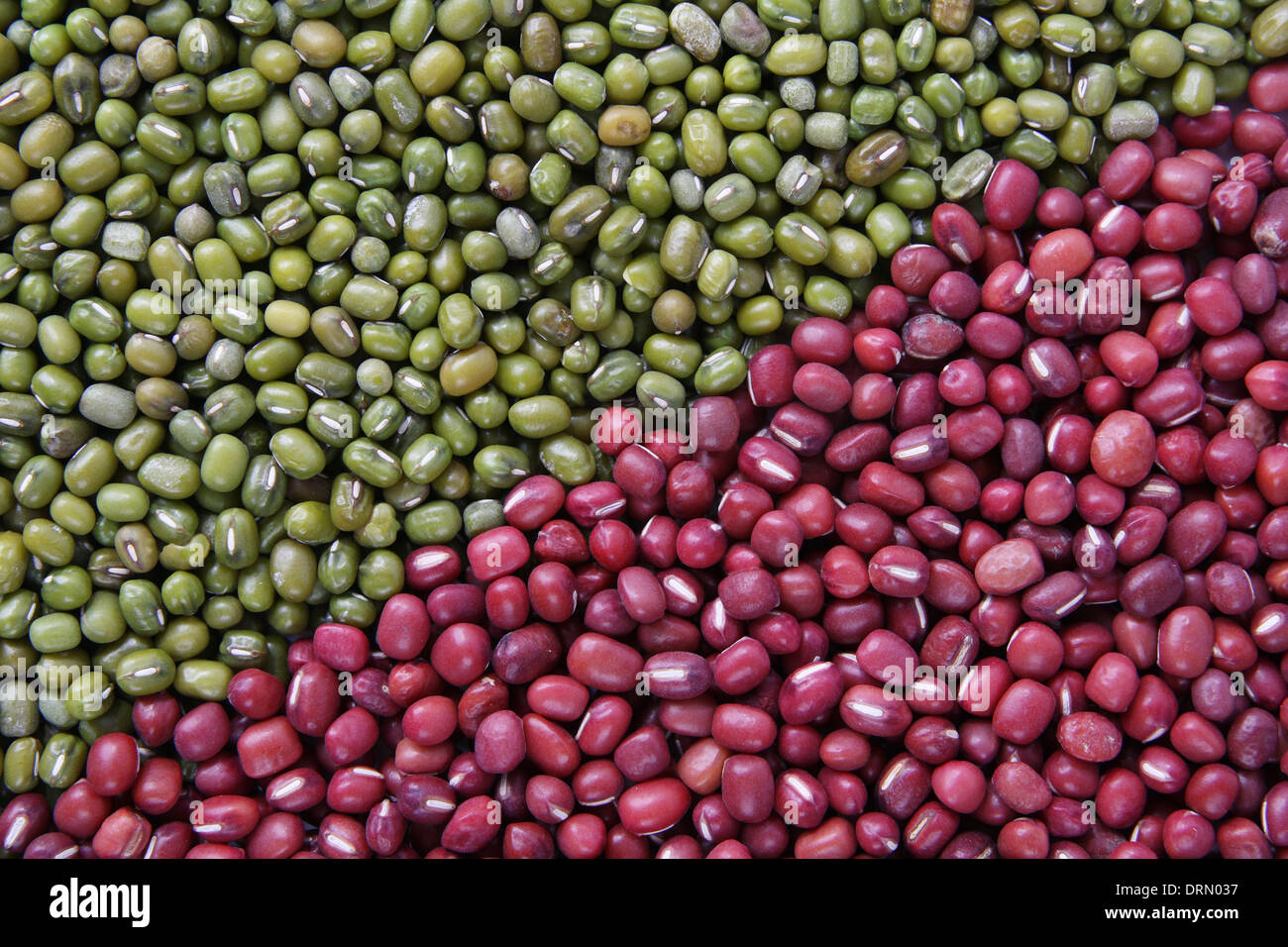 mung and red beans - Stock Image