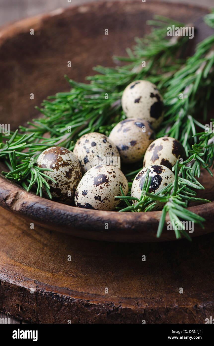 Fresh quail egg in bowl - Stock Image