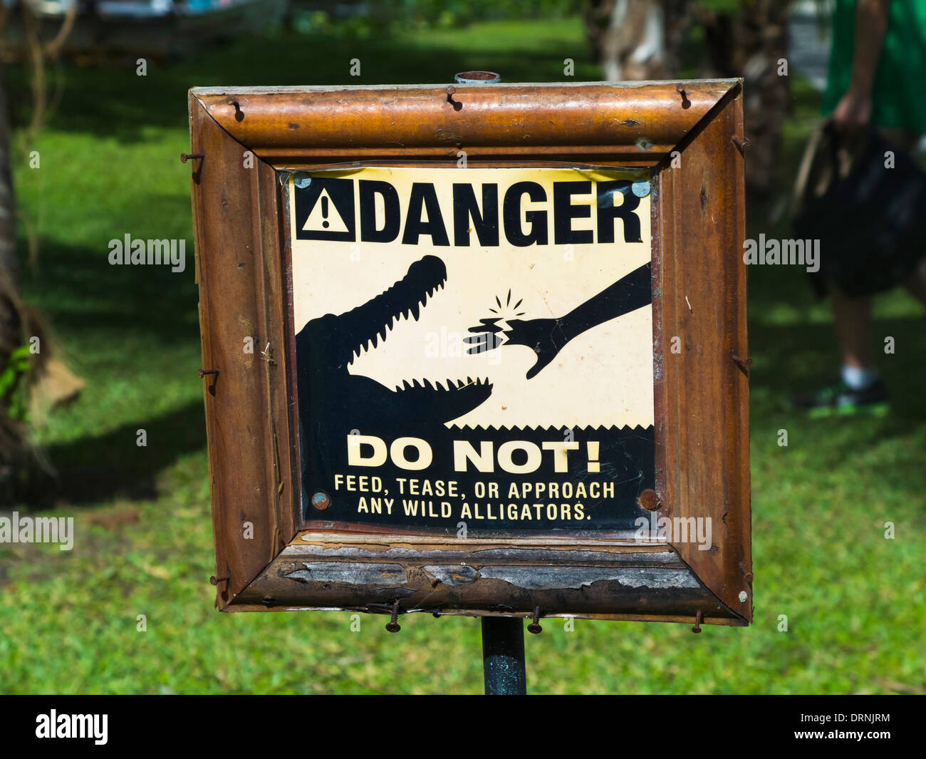 danger alligator sign in the everglades national park florida usa
