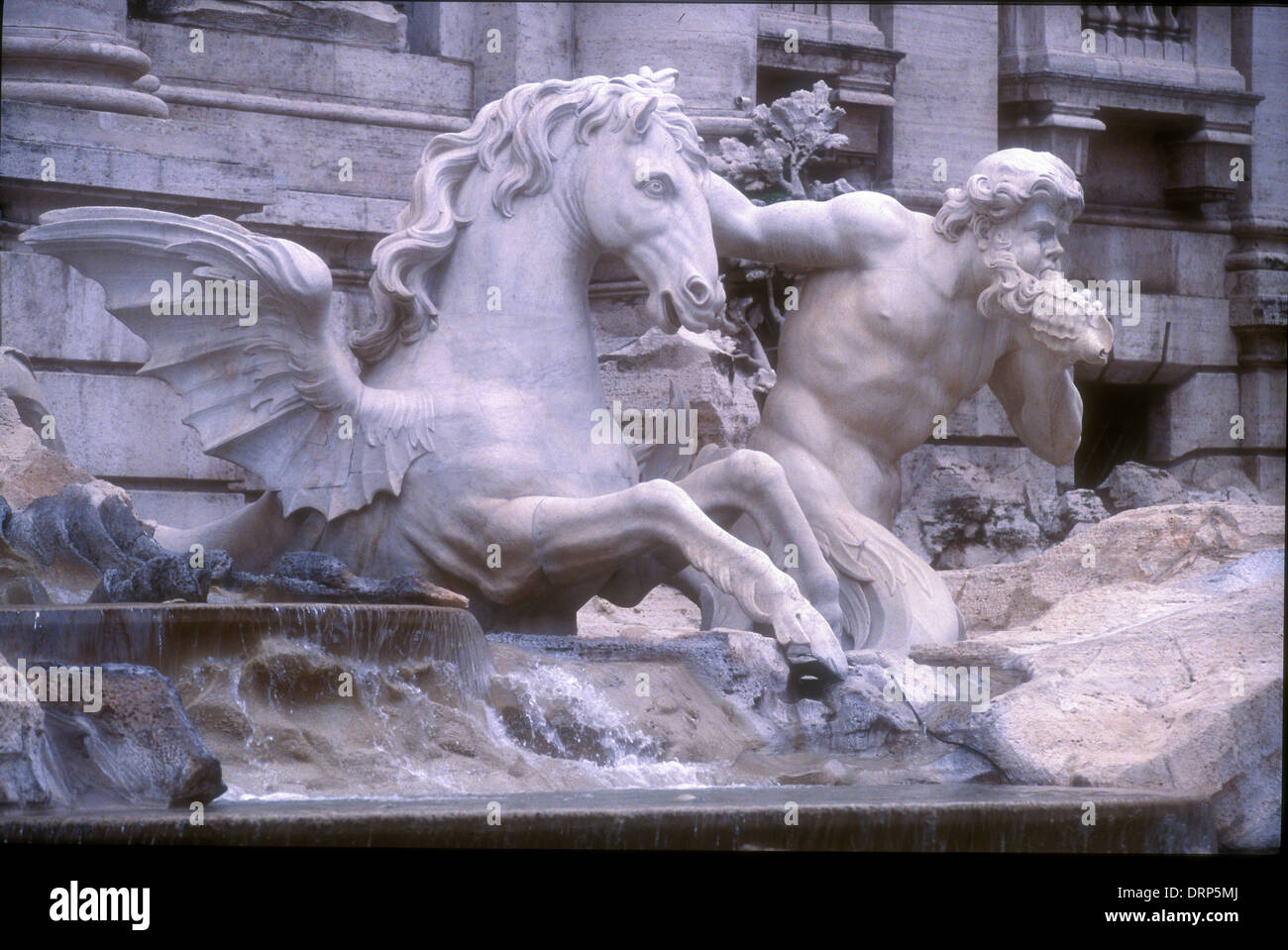 Trevi Fountain Rome Detail Of Horse Winged Horse Sculpture Stock Photo Alamy