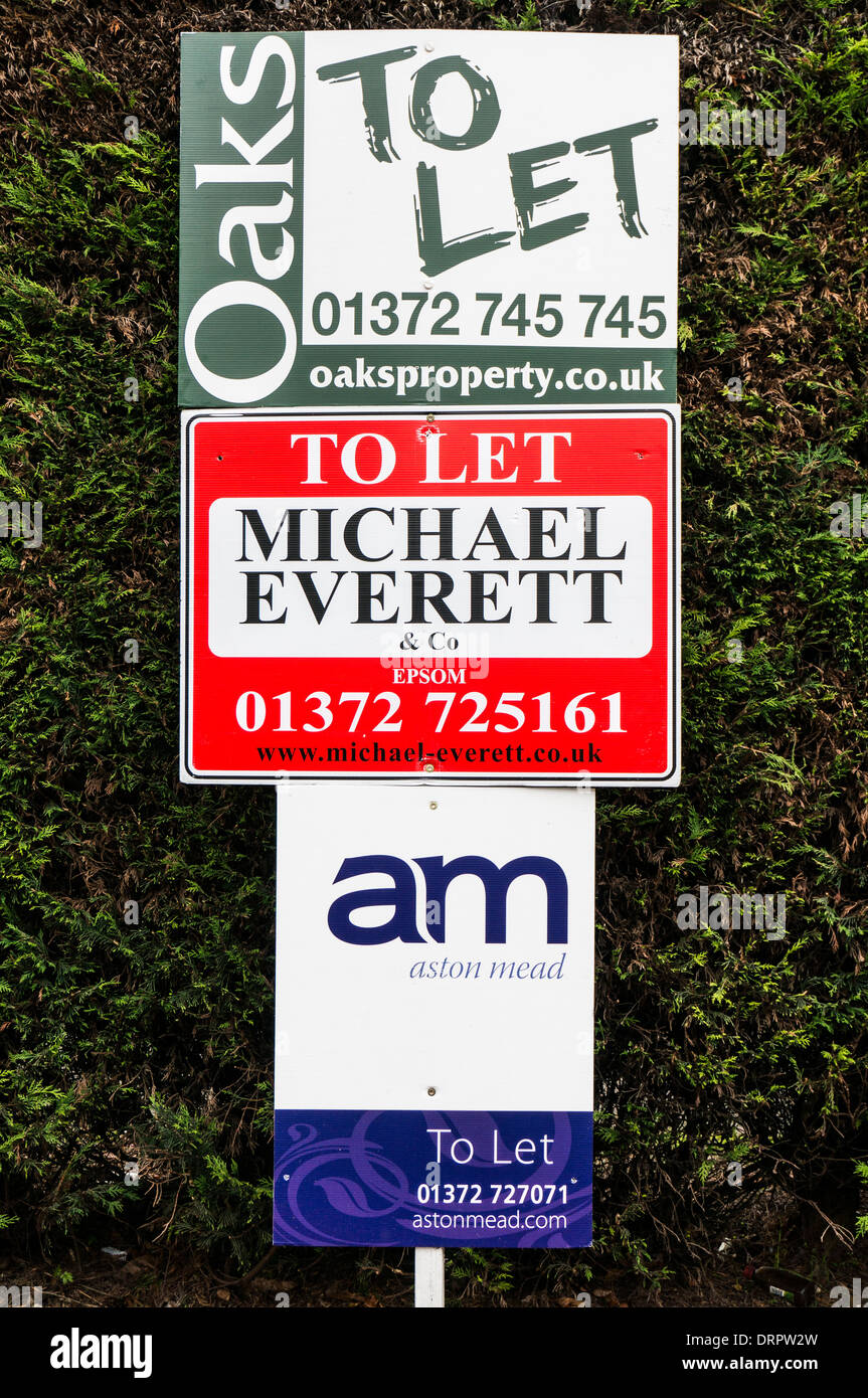 A. house to let sign, with three different local letting agents vying for the business. Epsom, Surrey, England, UK. - Stock Image