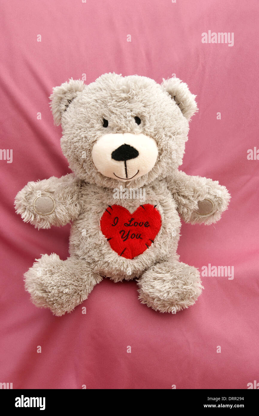 "valentines day teddy bear with a heart saying ""i love you stock"