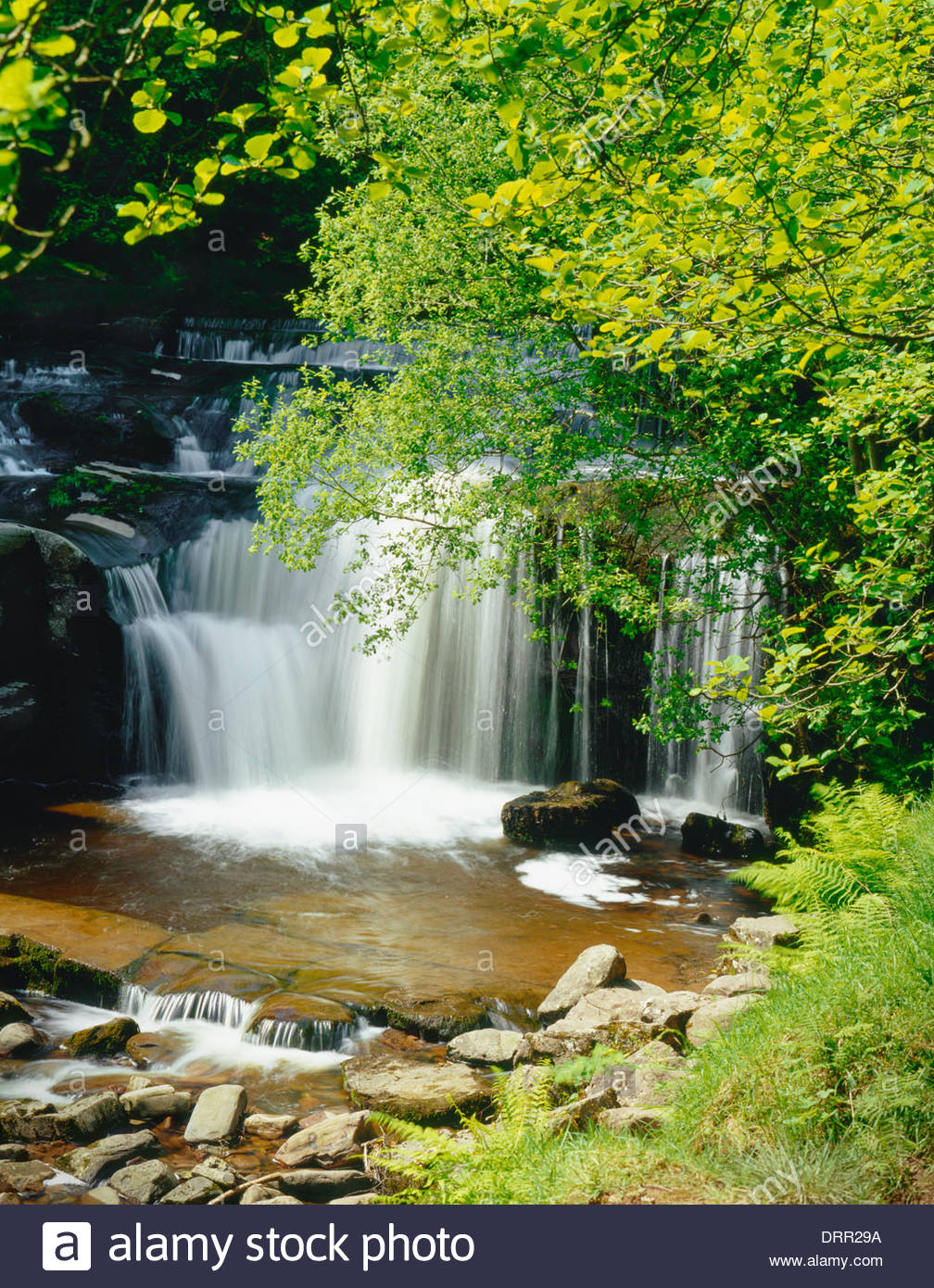 Brecon Beacons National Park; Waterfalls at Blaen-y-glyn, Torpantau Powys Wales UK - Stock Image