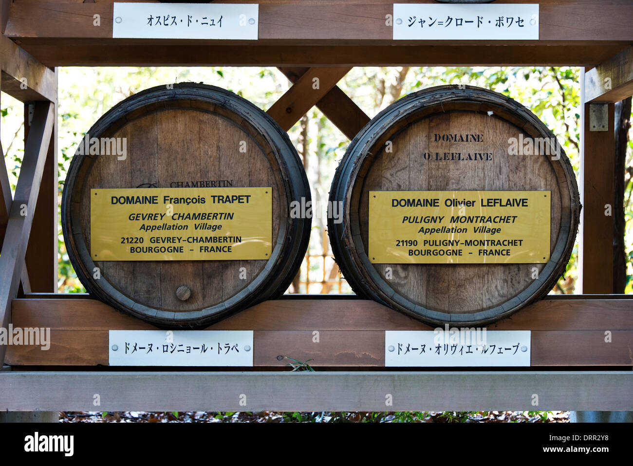 Barrels of donated Bourgogne Wine, Meiji Shrine, Tokyo, Japan - Stock Image