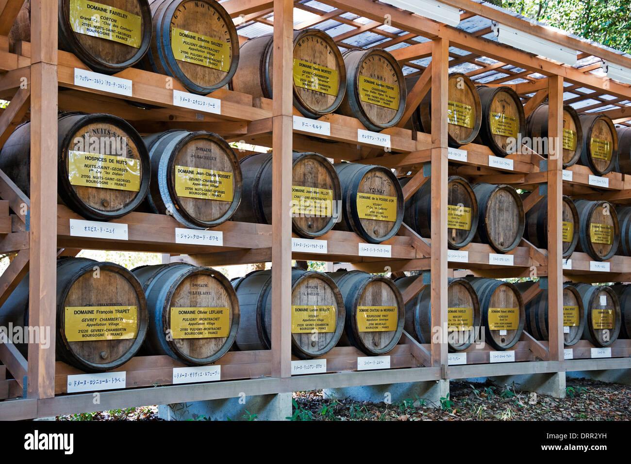Offerings of donated Bourgogne Wine, Meiji Shrine, Tokyo, Japan - Stock Image