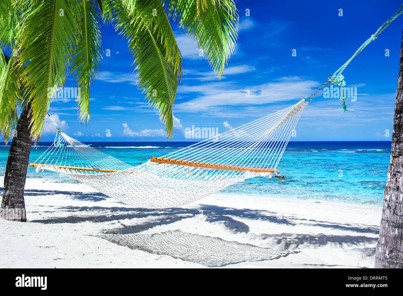 Empty hammock between palm trees on tropical beach - Stock Image
