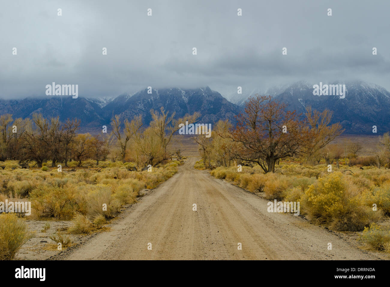 road in Manzanar a WW2 era prison camp that held Japanese Americans  California Sierras in background - Stock Image