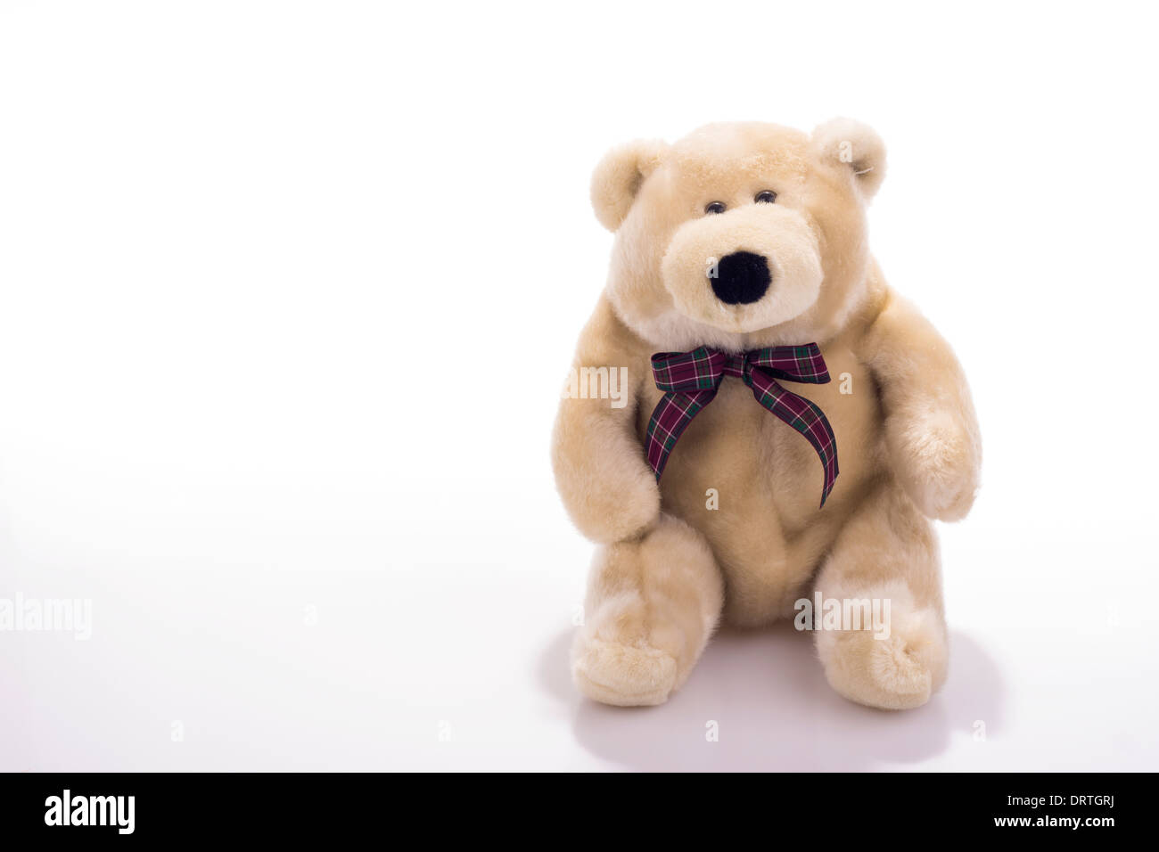Toy teddy bear wearing bow-tie isolated on white - Stock Image