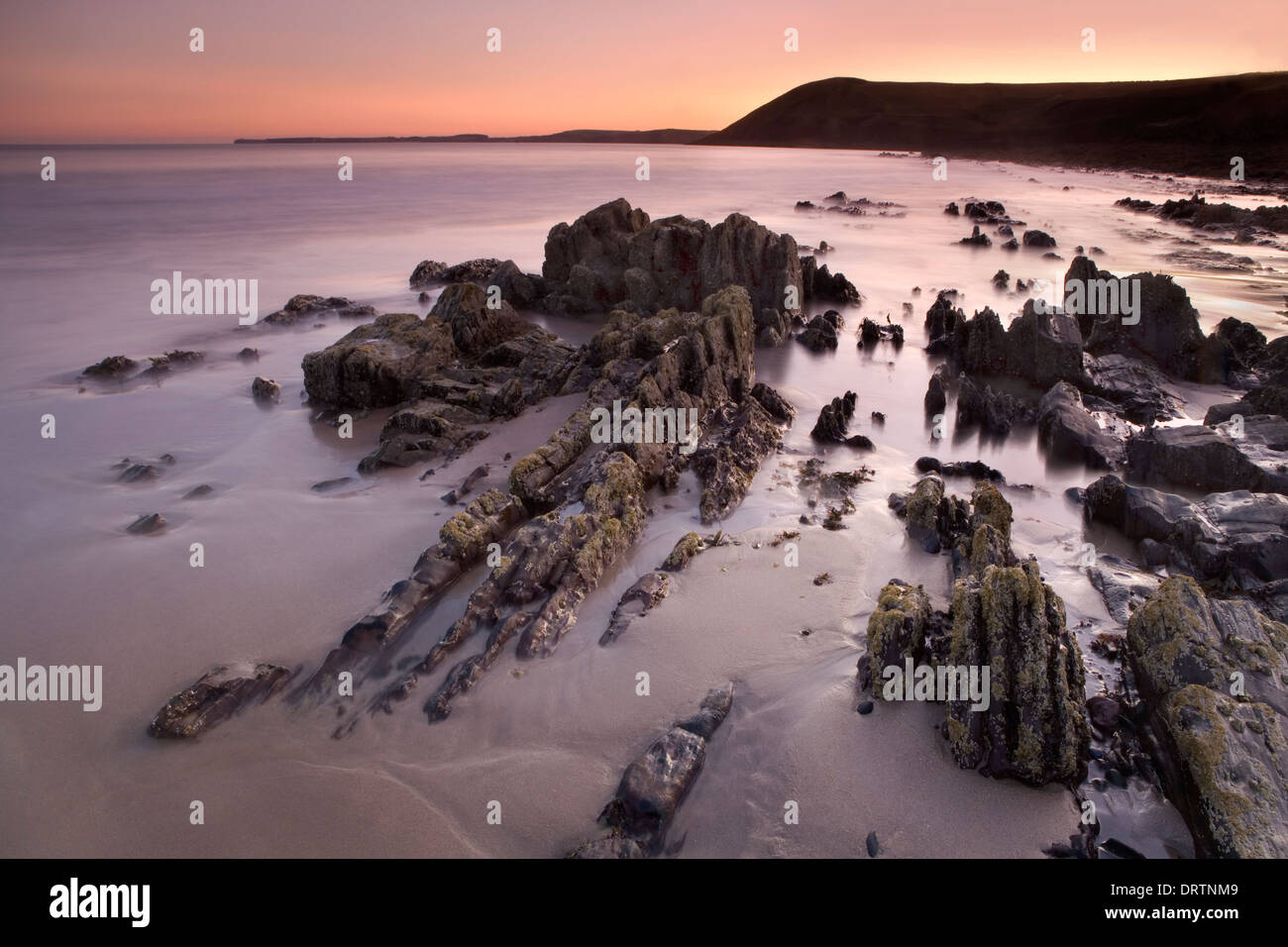 Jagged rocks sticking out of the sand at low tide during sunset on Manorbier beach, Pembrokeshire, South Wales, UK - Stock Image