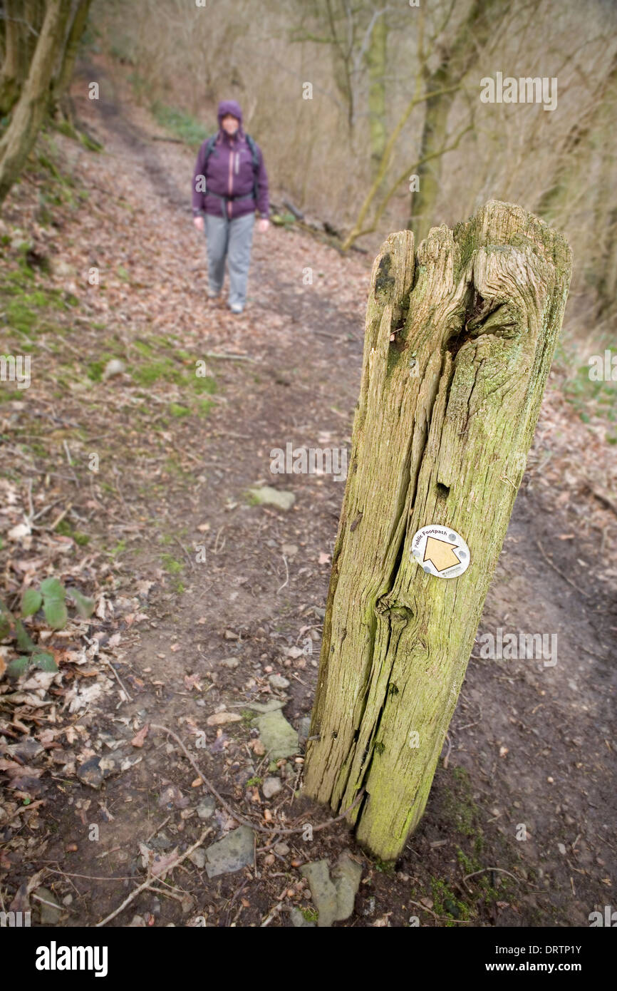 A woman in a waterproof coat is walking towards a Public Footpath sign nailed to an old wooden post. Stock Photo