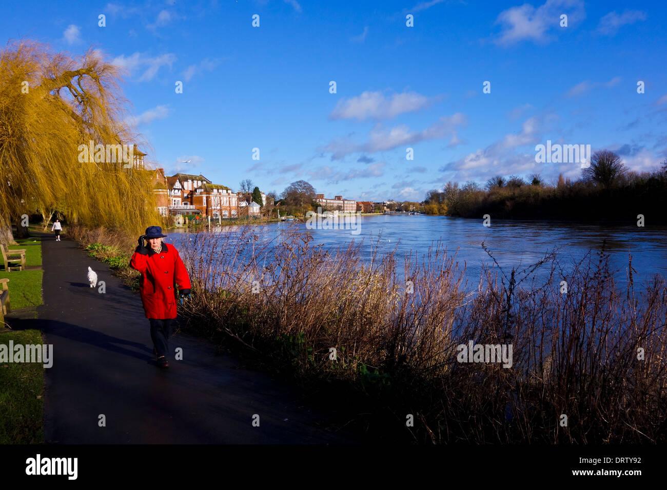 Thames path Radnor Gardens Strawberry Hill Twickenham England UK - Stock Image