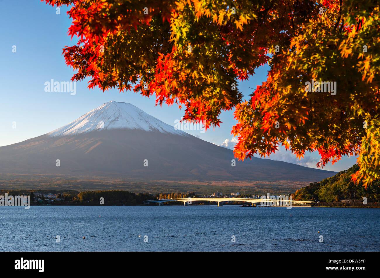 Mt Fuji in the Fall season. Stock Photo