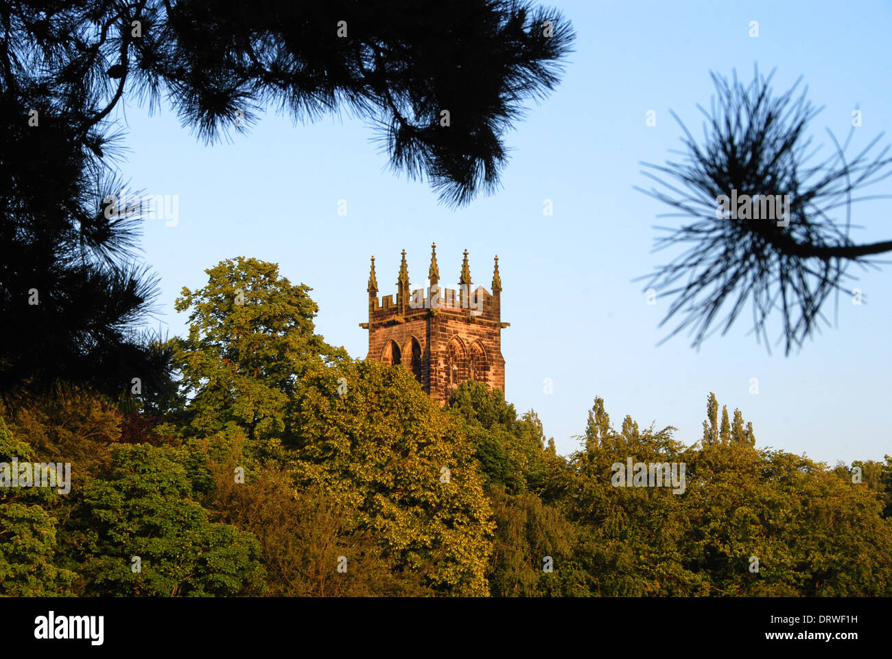 Bell tower of St Mary's Church, Lymm, over the trees - Stock Image