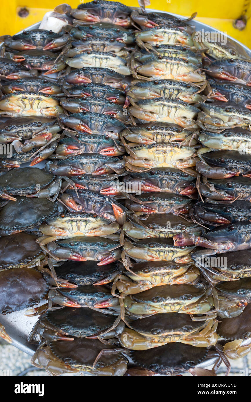 Crabs on Sale Ben Thanh Market Ho Chi Minh City - Stock Image
