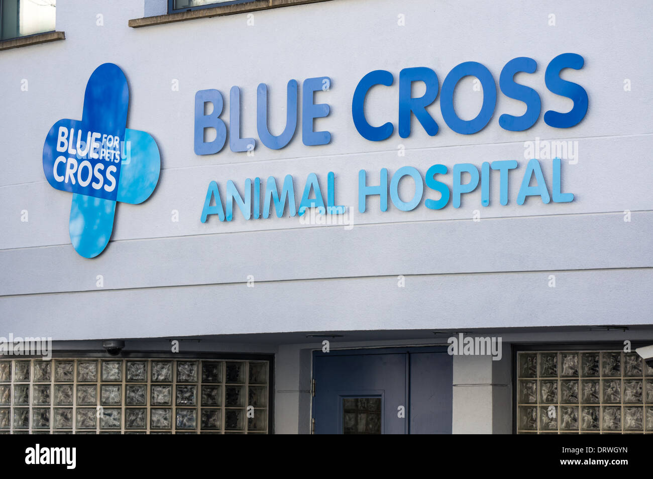 Entrance to the Blue Cross Animal Hospital near Victoria Station, London England United Kingdom UK - Stock Image