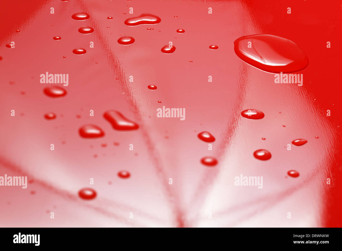 Water droplets on red umbrella. - Stock Image