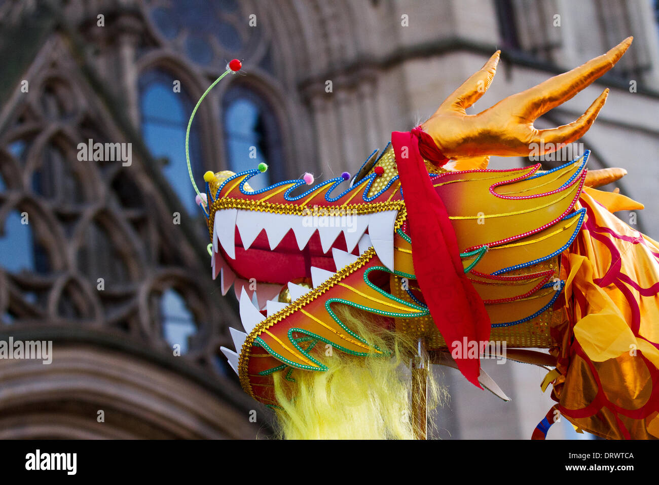 Manchester, Chinatown 2nd February, 2104.   High pole dragon dance at the Chinese New Year in Albert Square, Manchester the North's biggest Chinese New Year celebrations. Manchester's Chinatown is one of Europe's biggest tucked into a narrow grid of streets behind Piccadilly Gardens.  With a 175-foot paper dragon, a lion dance, martial arts demonstrations, the Dragon Parade is one of the highlights of Manchester's annual events calendar. Credit:  Mar Photographics/Alamy Live News. - Stock Image
