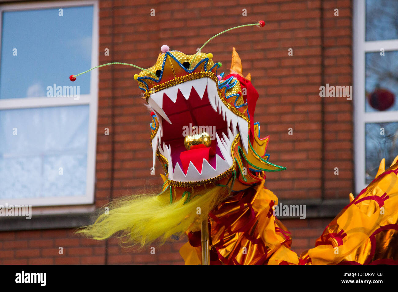 Manchester, Chinatown 2nd February, 2104.    High pole dragon dance at the Chinese New Year in Manchester the North's biggest Chinese New Year celebrations. Manchester's Chinatown is one of Europe's biggest tucked into a narrow grid of streets behind Piccadilly Gardens.  With a 175-foot paper dragon, a lion dance, martial arts demonstrations, the Dragon Parade is one of the highlights of Manchester's annual events calendar. Credit:  Mar Photographics/Alamy Live News. - Stock Image