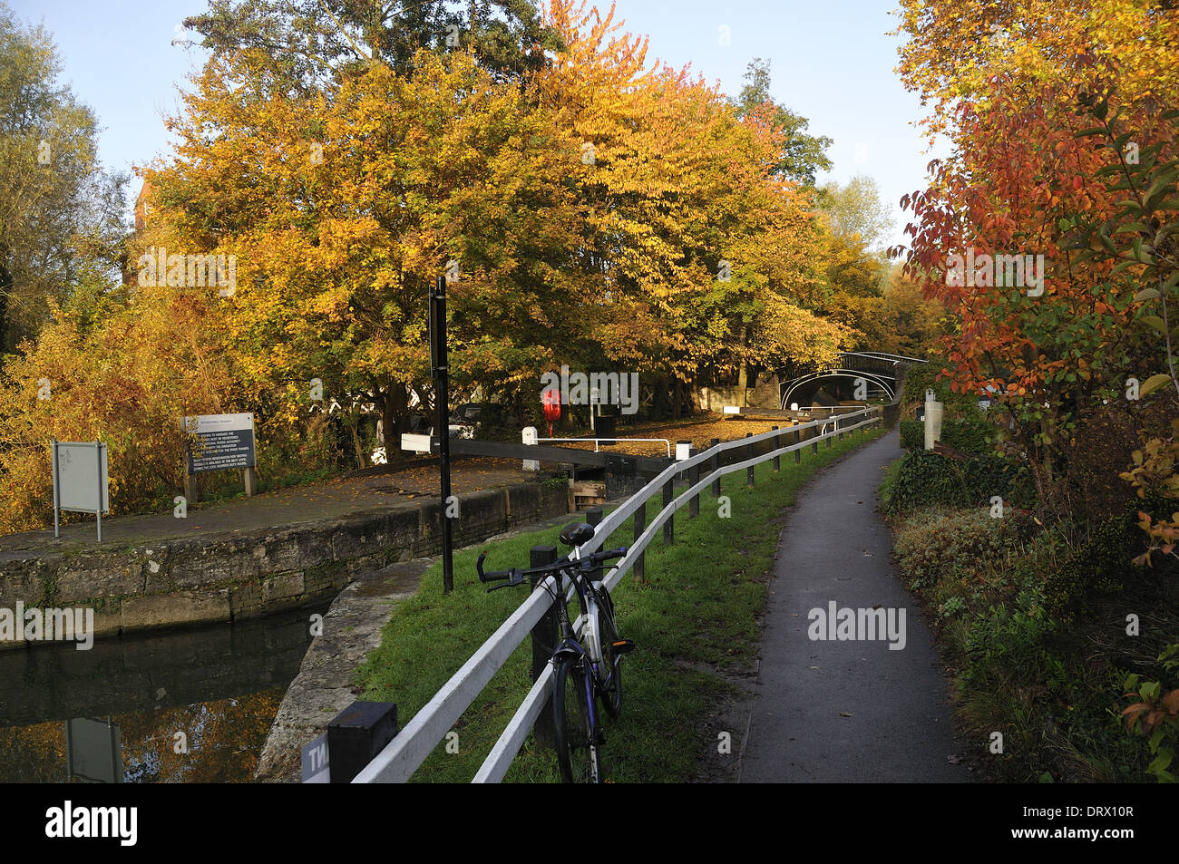 Autumn trees at Oxford Canal - Stock Image