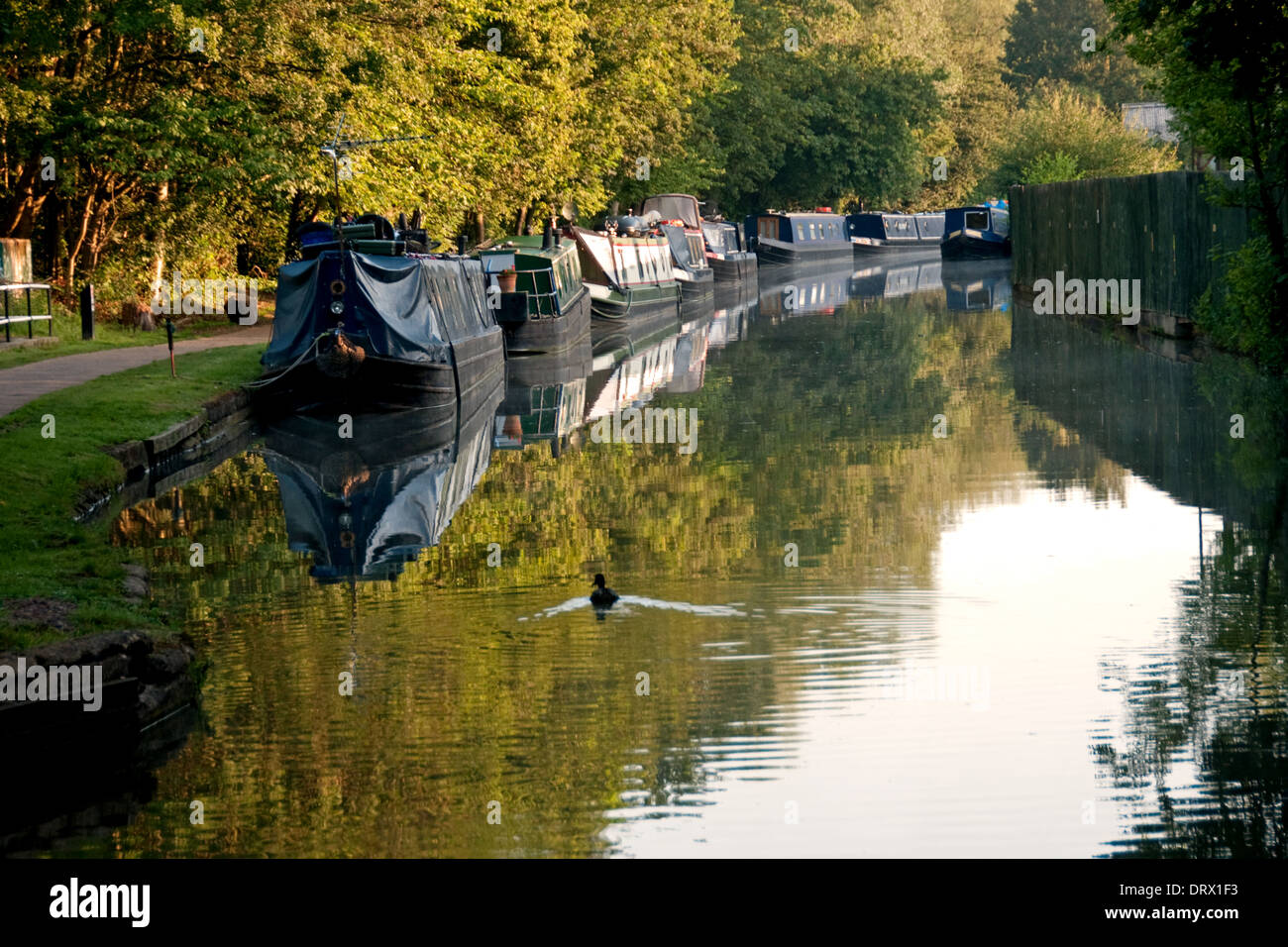 Oxford canal and moored narrow boats - Stock Image