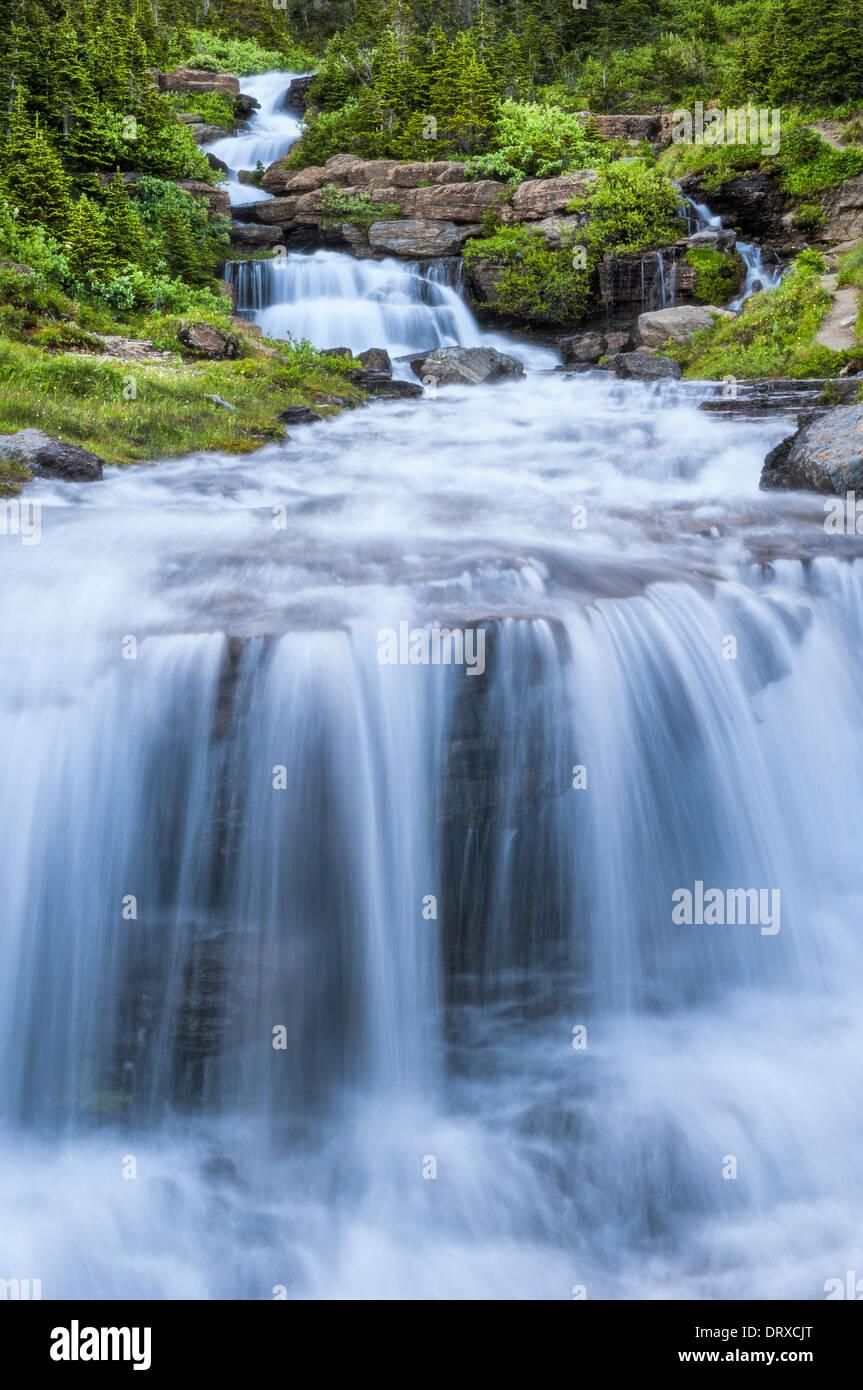 Cascading waterfalls of Lunch Creek along Going to the Sun road near Logan Pass; Glacier National Park, Montana. - Stock Image