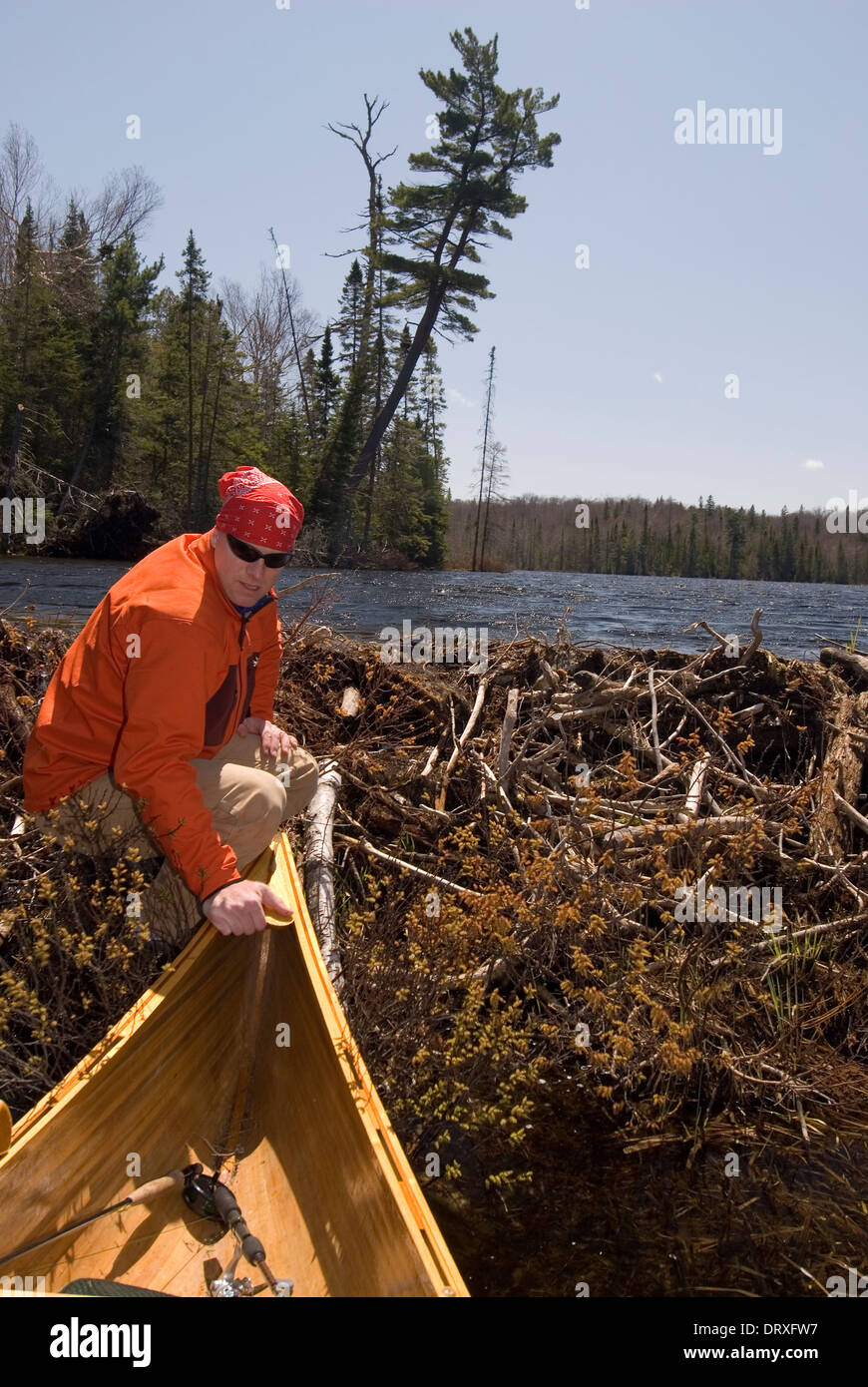 A man portaging a canoe to a calm lake in Northern Ontario. - Stock Image