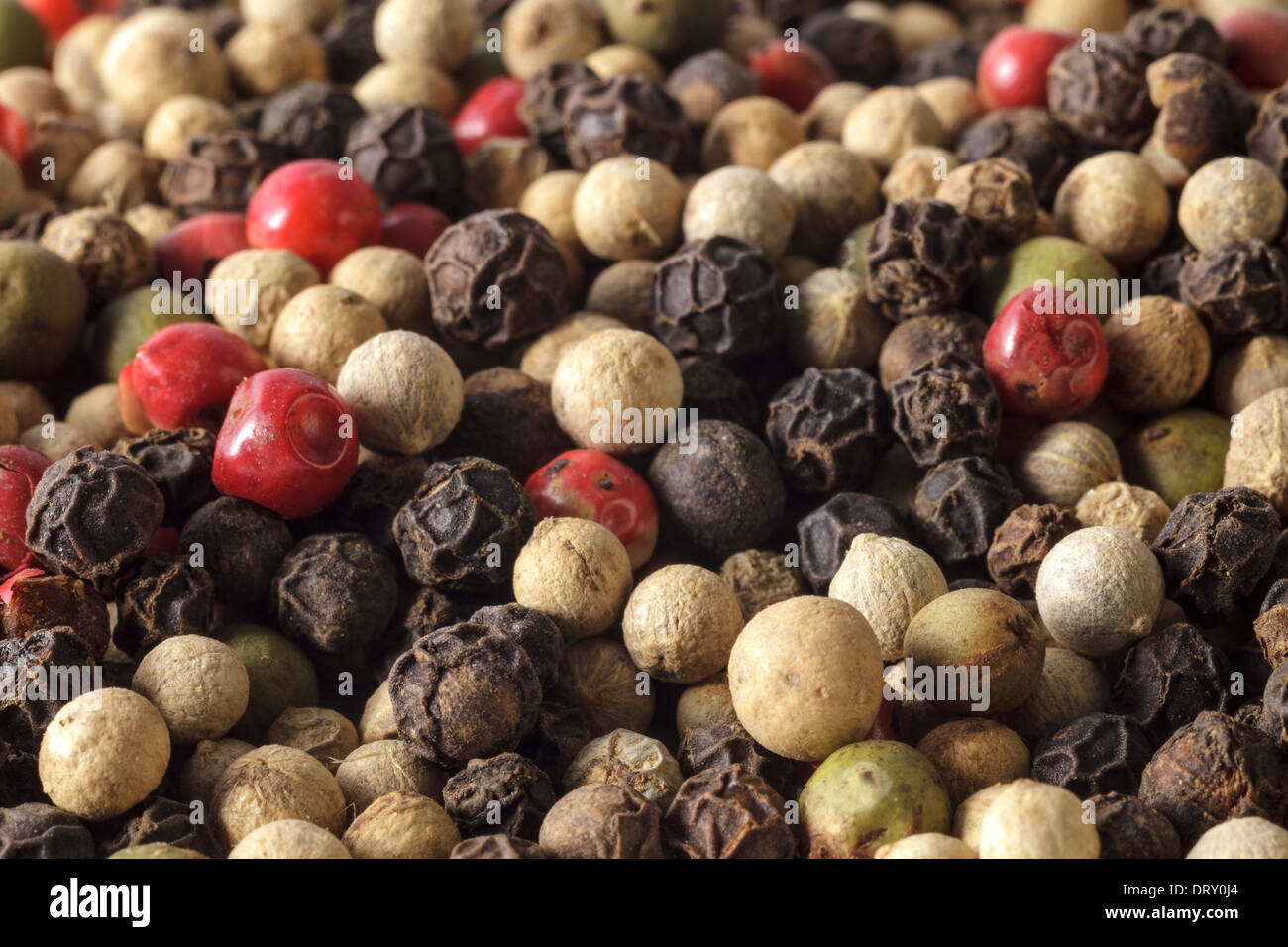 Peppercorns mixed - Stock Image