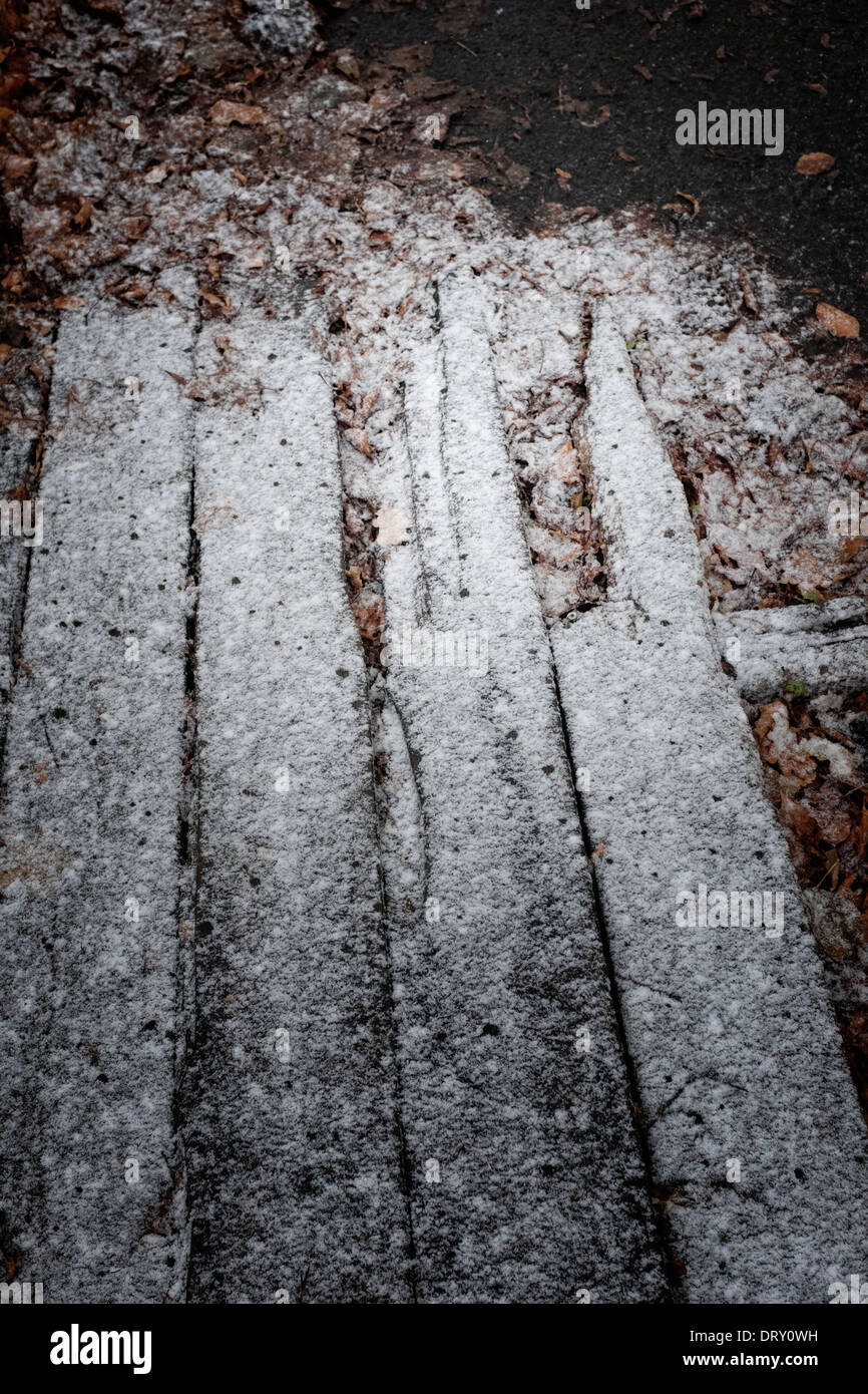 Rotten wooden planks and leaves in a winter frost. - Stock Image